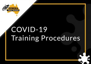 Eureka's Truck Driving Training notice and procedures of COVID-19 and as the featured image of the 'covid-19 training procedures' blog.
